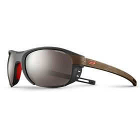Julbo Regatta Polarized 3+ Glasögon grå/brun